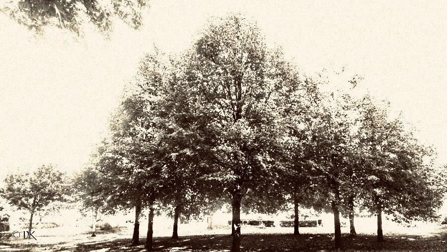 Parken i nabolaget @ Kirsten K Kester | MitLivsRejser.com