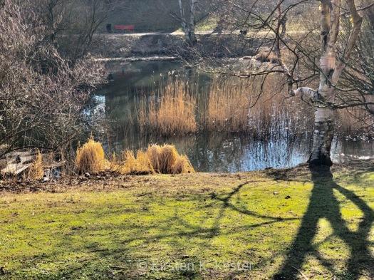 Botanisk Have i Århus @ Kirsten K Kester | MitLivsRejser.com